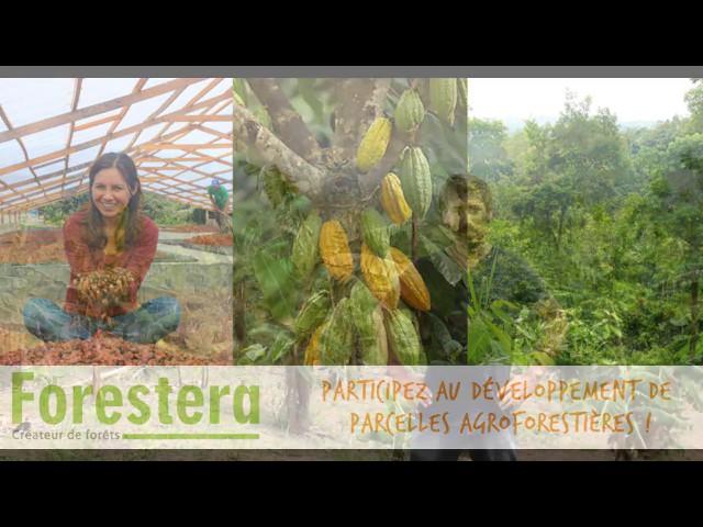 Le financement participatif au service de la reforestation et d'une autre agriculture